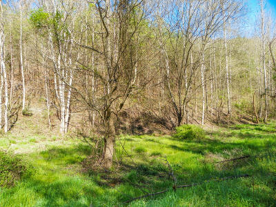 Sevierville Residential Lots & Land For Sale: Lot# 20 Licking Spring Way