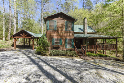 Townsend TN Single Family Home For Sale: $430,000