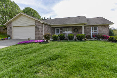 Maryville Single Family Home For Sale: 2807 June Bug Way