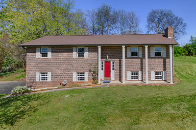 Lenoir City Single Family Home Pending - Continue To Show - F: 2550 Avery Circle #1