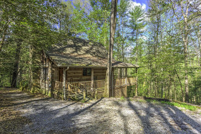 Blount County Single Family Home For Sale: 144 Black Mash Hollow Rd