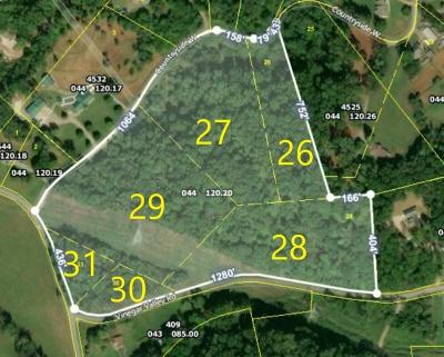 Blount County Residential Lots & Land For Sale: 359 W Vinegar Valley Rd