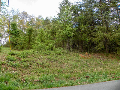 Sevierville Residential Lots & Land For Sale: Lot# 17 Valley Woods Drive