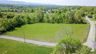 Maryville Residential Lots & Land For Sale: 728 Pleasant Hill Rd