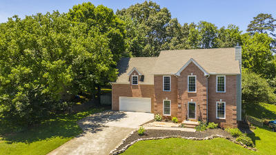 Knoxville Single Family Home For Sale: 1617 Scenic Valley Lane