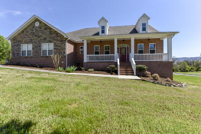 Blount County Single Family Home For Sale: 4356 Thunderhead Mountain Drive