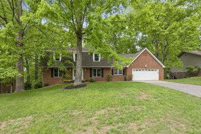 Knoxville Single Family Home For Sale: 8709 Dunaire Drive