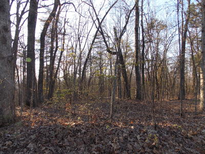 Blount County Residential Lots & Land For Sale: Lot 44 Tower Rd