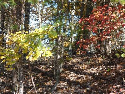 Residential Lots & Land For Sale: Lot #39 Eerie Point