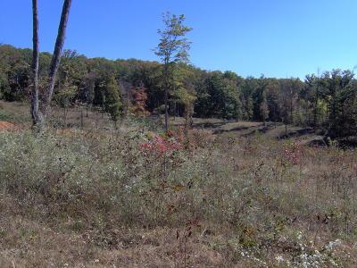 Maynardville Residential Lots & Land For Sale: Gregory Lane