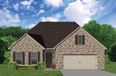 Knoxville Single Family Home For Sale: 10606 Tin Man Lane