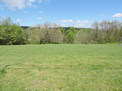 Knox County Residential Lots & Land For Sale: 1613 Hutchinson Ave