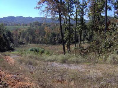 Maynardville Residential Lots & Land For Sale: Ashley Drive