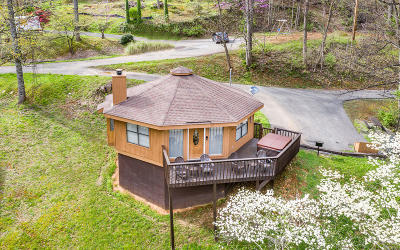 Sevier County Single Family Home For Sale: 1107 Villa Lane