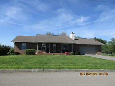 Sevier County Single Family Home For Sale: 1429 Kay View Drive