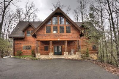 Sevier County Single Family Home For Sale: 828 Pinnacle Vista Rd