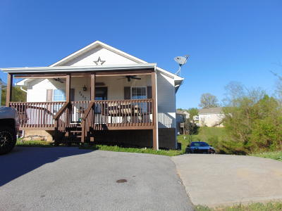 Sevier County Single Family Home For Sale: 2420 Scenic Mountain Drive
