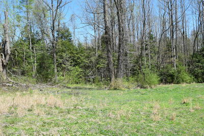 Cocke County Residential Lots & Land For Sale: Cane Way