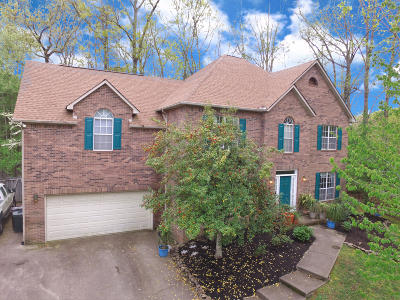 Anderson County, Campbell County, Claiborne County, Grainger County, Union County Single Family Home For Sale: 100 Nathan Lane