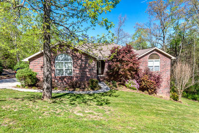 Andersonville, Maynardville, Norris Single Family Home For Sale: 185 Field Stone Drive