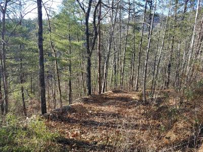 Blount County Residential Lots & Land For Sale: 651 Hawk View Drive