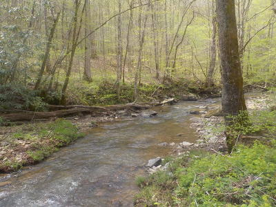Tazewell Residential Lots & Land For Sale: Snake Hollow