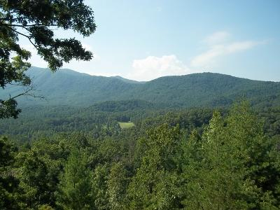 Blount County Residential Lots & Land For Sale: Tolliver Tr