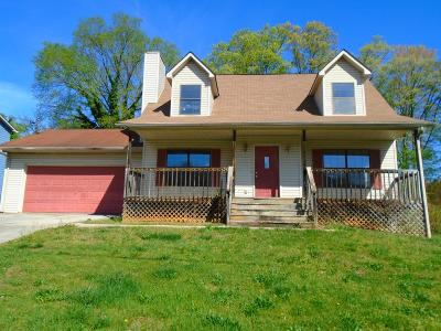 Knoxville Single Family Home For Sale: 4297 Larigo Drive