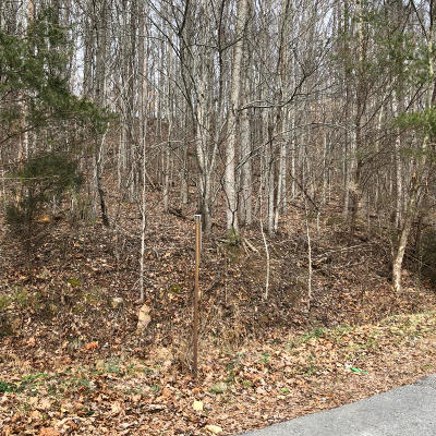 Claiborne County Residential Lots & Land For Sale: Lone Mountain Rd Rd