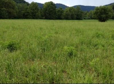 Anderson County, Campbell County, Claiborne County, Grainger County, Union County Residential Lots & Land For Sale: Wooldridge Lane