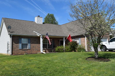 Blount County Single Family Home For Sale: 1423 Liz Vista Court