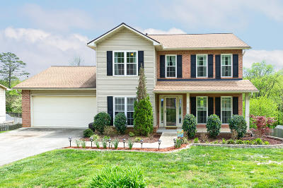 Knoxville Single Family Home For Sale: 8720 Brucewood Lane