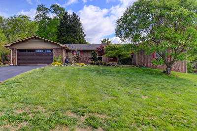 Knoxville Single Family Home For Sale: 6900 Riverwood Drive