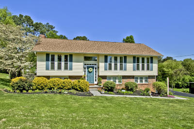 Knoxville Single Family Home For Sale: 508 Harrow Rd