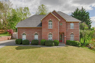 Knoxville Single Family Home For Sale: 2514 Piney Grove Church Rd
