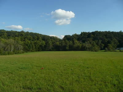 Sweetwater Residential Lots & Land For Sale: 774 Brunner Rd