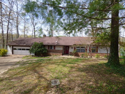 Fairfield Glade Single Family Home For Sale: 238 Lakeside Drive