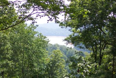 Anderson County, Campbell County, Claiborne County, Grainger County, Union County Residential Lots & Land For Sale: Buckhorn Lane