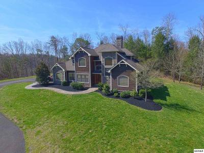 Sevier County Single Family Home For Sale: 2831 Summit Trails Drive