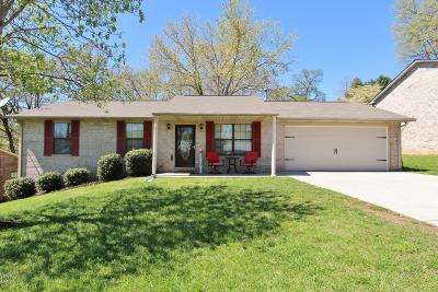 Knoxville Single Family Home For Sale: 711 Genesis Lane