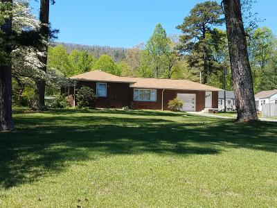 Roane County Single Family Home For Sale: 429 S Chamberlain Ave