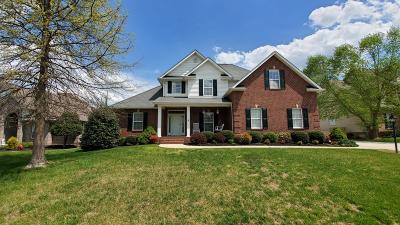 Knoxville Single Family Home For Sale: 7840 Mendonhall Estates Blvd #1