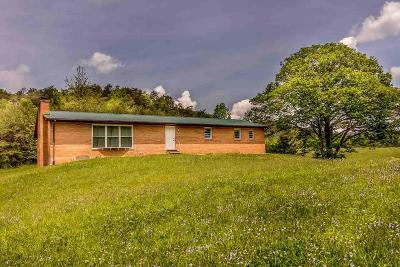 Tazewell Single Family Home For Sale: 1165 Upper Caney Rd
