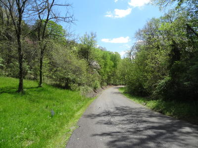 Cocke County Residential Lots & Land For Sale: Ivy Way