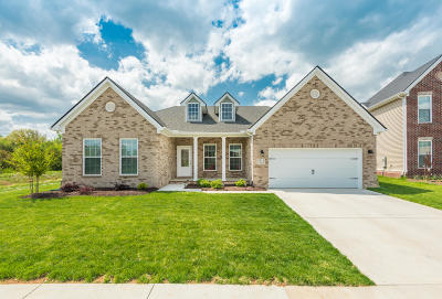 Knoxville Single Family Home For Sale: 2511 Blackberry Ridge Blvd