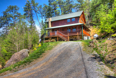 Sevierville Single Family Home For Sale: 3417 Sugar Maple Loop Rd