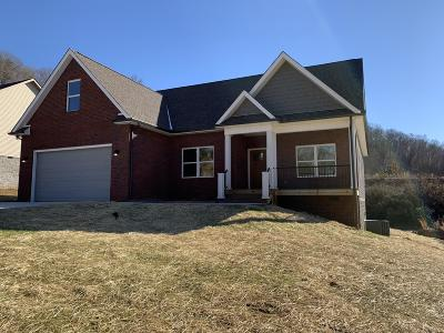 Anderson County Single Family Home For Sale: 418 Brookstone Ridge Drive