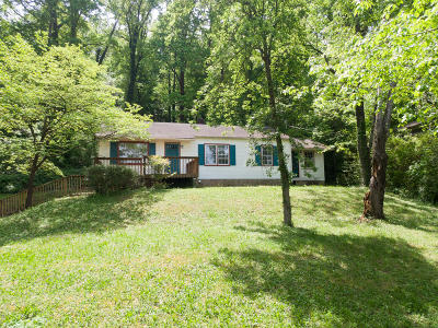 Knoxville Single Family Home For Sale: 124 Holston Court