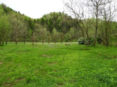 Sevier County Residential Lots & Land For Sale: 4961 Bogard Rd