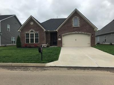 Knoxville Single Family Home For Sale: 12310 Chirping Bird Lane